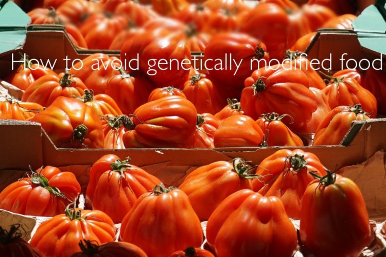 Steering clear of GMO foods- Healthy blog